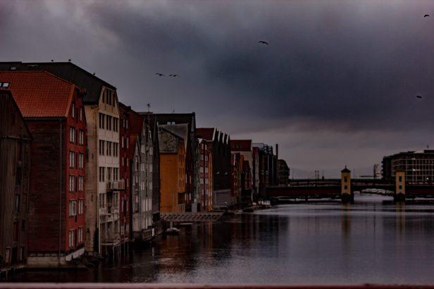 Violet Road Trondheim